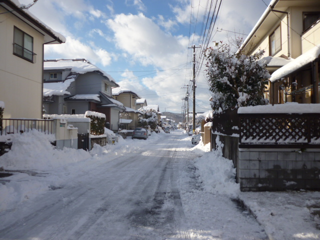 1.31 雪1